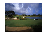 Barbados Golf Club, Hole 15 Regular Photographic Print by J.D. Cuban