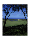 Sandy Lane C.C., Hole 2 Regular Photographic Print by J.D. Cuban