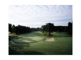 Pinehurst Golf Course No. 2, Hole 16 Regular Photographic Print by Stephen Szurlej