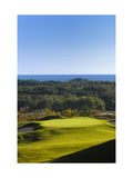 Crystal Downs Country Club, lake beyond trees Regular Photographic Print by Dom Furore