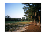 Pinehurst Golf Course No. 2, Hole 12 Regular Photographic Print by Stephen Szurlej