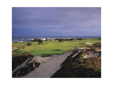 Pacific Grove Municipal Golf Course, California Regular Photographic Print by Stephen Szurlej