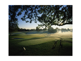 Oakland Hills Country Club, Hole 9 Regular Photographic Print by Stephen Szurlej