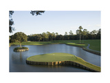 TPC Sawgrass Stadium Course, Island green, Hole 17 Regular Photographic Print by Stephen Szurlej