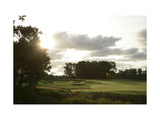 King Carter Golf Club, morning sunlight Regular Photographic Print by Stephen Szurlej