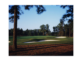 Pinehurst Golf Course No. 2 Regular Photographic Print by Stephen Szurlej