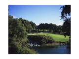 Valderrama Golf Club, San Roque, Spain Regular Photographic Print by Stephen Szurlej