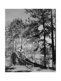 Callaway Gardens, Hole 6 Regular Photographic Print