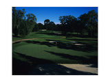 Oak Hill C.C., Hole 11 Regular Photographic Print by Stephen Szurlej