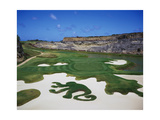 Sandy Lane Country Club Green Monkey, Hole 16 Regular Photographic Print by J.D. Cuban