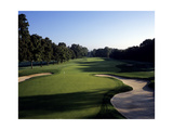 Baltusrol Golf Club, Hole 6 Regular Photographic Print by Stephen Szurlej