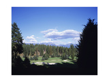 Old Works Golf Course, Pine groves Regular Photographic Print by Stephen Szurlej