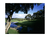 Valderrama Golf Club Regular Photographic Print by Stephen Szurlej