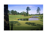 Pinehurst Golf Course No. 4, Hole 4 Photographic Print by Dom Furore