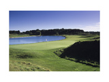 Blackwolf Run Golf Club River Course Regular Photographic Print by Dom Furore