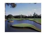 TPC Sawgrass the Stadium Course, Hole 17 Regular Photographic Print by Stephen Szurlej