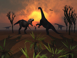 T. Rex Confronts a Group of Camarasaurus Dinosaurs Stampa fotografica di Stocktrek Images,