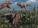 Two T. Rex Dinosaurs Confront Each Other over a Dead Triceratops Photographic Print by  Stocktrek Images