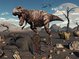 A T. Rex Is About to Make a Meal of a Dead Triceratops Photographic Print by  Stocktrek Images