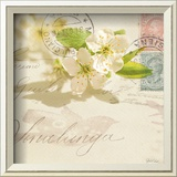 Vintage Letter and Apple Blossoms Prints by Deborah Schenck