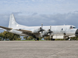 A Portuguese Air Force P-3P Orion at Beja Air Base, Portugal Photographic Print by  Stocktrek Images
