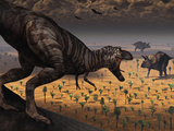 A Tyrannosaurus Rex Spots Two Passing Triceratops Stampa fotografica di Stocktrek Images,