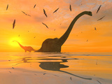 Diplodocus Dinosaurs Bathe in a Large Body of Water Photographie par  Stocktrek Images