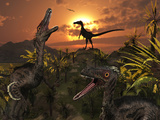 A Group of Feathered Carnivorous Velociraptors from the Cretaceous Period on Earth Photographic Print by  Stocktrek Images