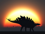 A Stegosaurus Silhouetted Against the Setting Sun at the End of a Prehistoric Day Stampa fotografica di Stocktrek Images,