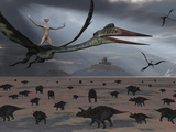 Reptoids Ride on the Backs of Quetzalcoatlus Using Telepathy Photographic Print by  Stocktrek Images