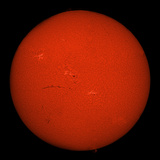 H-Alpha Full Sun in Red Color with Active Areas and Filaments Photographic Print by  Stocktrek Images