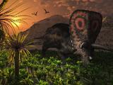 A Lone Torosaurus Dinosaur Feeding on Plants Photographic Print by  Stocktrek Images