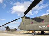 Italian Army Ch-47C Chinook Helicopters at Forward Operating Base Herat Photographic Print by  Stocktrek Images