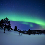 Aurora Borealis and a Shooting Star in the Woods of Troms County, Norway Lámina fotográfica por Stocktrek Images