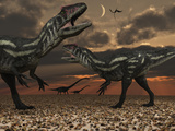 Allosaurus Dinosaurs Stalk their Next Meal Photographie par  Stocktrek Images