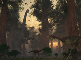 A Camarasaurus Dinosaur Feeding While a Pair of Compsognathus Sneak Around Photographic Print by  Stocktrek Images