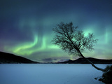 Aurora Borealis over Sandvannet Lake in Troms County, Norway Photographie par  Stocktrek Images