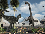A Carnivorous Allosaurus Confronts a Giant Diplodocus Herbivore During the Jurassic Period on Earth Photographie par  Stocktrek Images