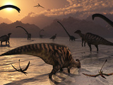 Omeisaurus and Parasaurolphus Dinosaurs Gather Together Photographie par  Stocktrek Images