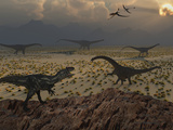 An Allosaurus Dinosaur Spies a Group of Young Diplodocus Herbivores Photographie par  Stocktrek Images