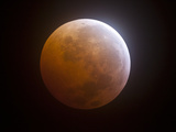 Lunar Eclipse Photographic Print by  Stocktrek Images