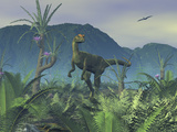 A Colorful Adult Male Dilophosaurus Explores a Hilltop Photographic Print by  Stocktrek Images