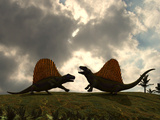Dimetrodon Fight over Territory Photographic Print by  Stocktrek Images