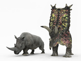 Stocktrek Images - An Adult Pentaceratops Compared to a Modern Adult White Rhinoceros - Fotografik Baskı