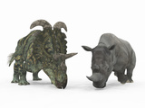 An Adult Albertaceratops Compared to a Modern Adult White Rhinoceros Photographic Print by  Stocktrek Images
