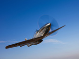 A P-51D Mustang in Flight Photographic Print by  Stocktrek Images