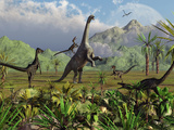 Velociraptor Dinosaurs Attack a Camarasaurus for their Next Meal Photographic Print by  Stocktrek Images