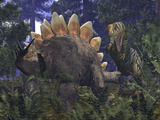 An Allosaurus Stumbles Upon a Grazing Stegosaurus Photographie par  Stocktrek Images