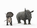 An Adult Zuniceratops Compared to a Modern Adult White Rhinoceros Photographic Print by  Stocktrek Images