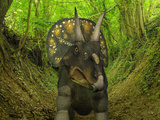 A Nedoceratops Wanders a Cretaceous Forest Photographic Print by  Stocktrek Images
